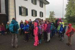 11.Mai 2019 - Wassertiere im Reusstal