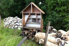 18.Juni 2016 - Besuch in unserem Insektenhotel