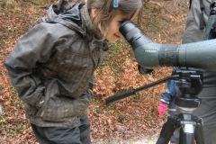 19.März 2011 - Vogel des Jahres; der Schwarzspecht